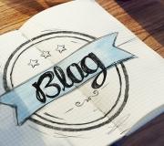 Vus pour vous sur la blogo