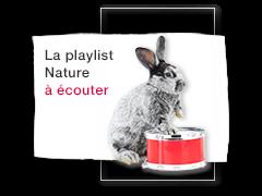 Un chien, un escargot, un éléphant, un phoque...<br />Découvrez les animaux en chanson